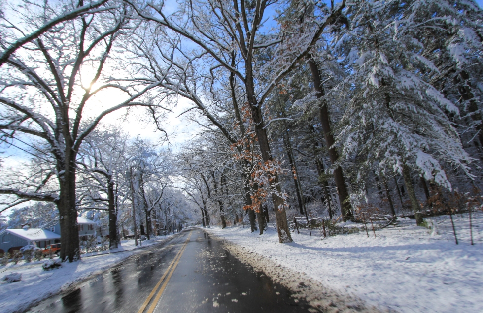 Winter Thoroughfare